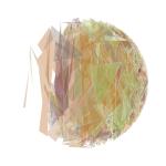 s15_03_01_shardsphere_4