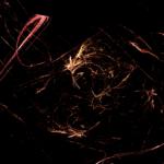 047_fractal_flames_12